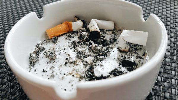 """都民ファースト「子どものいる家は禁煙!」← 都が"""" 私的空間 """"にまで介入するのはおかしいのでは?"""