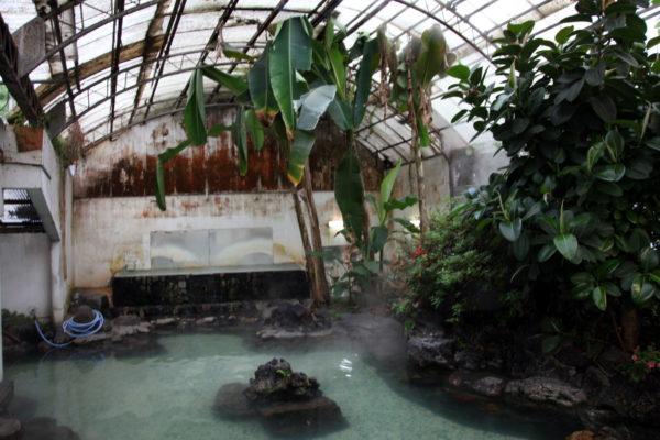 """とある""""混浴温泉""""潜入レポ 湯船から顔を出す無数のスケベおじさん、通称「ワニ」の生態に迫る"""