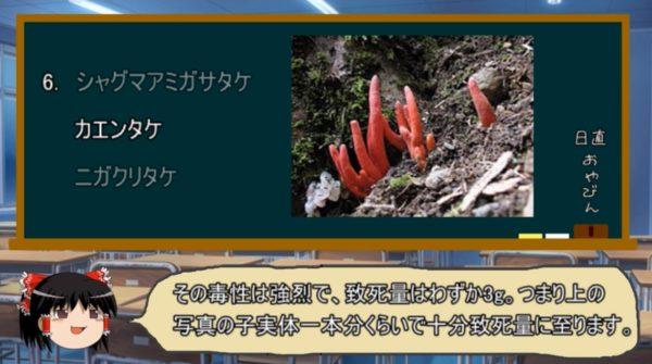 絶対に近づくな! ドクツルタケ・コレラタケ・カエンタケetc…危険過ぎる毒キノコの生態を解説「茹でて毒抜き中に、湯気を吸って死亡した事例も」
