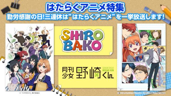 """勤労感謝の日は""""はたらくアニメ""""特集! 11/23は『月刊少女野崎くん』全12話、11/24・11/25は『SHIROBAKO』全24話の一挙放送"""