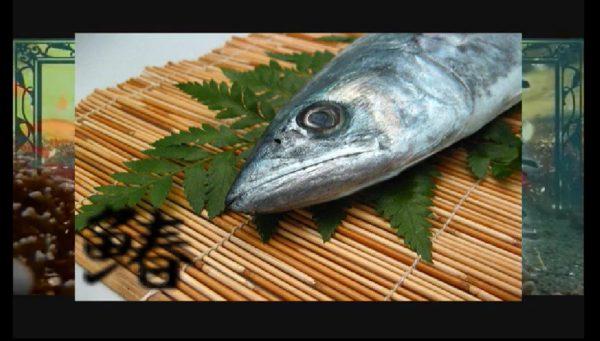 """『千本桜』を""""魚の名前だけ""""で替え歌してみた。「環状線を走り抜けて」→「カンキョウカジカ・バショウカジキ」カオスの極みな歌詞に「だいたいあってる」の声も"""