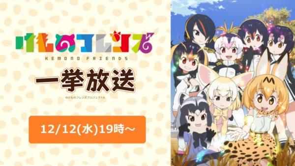 わーい! 12月12日(水)19時から『けものフレンズ』アニメ全12話の一挙放送が決定