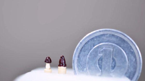 爪楊枝で「きのこの山」「たけのこの里」を作ってみた! 極小ながらチョコのツヤ感まで再現し「うまそうだな」「1円玉がでかいw」