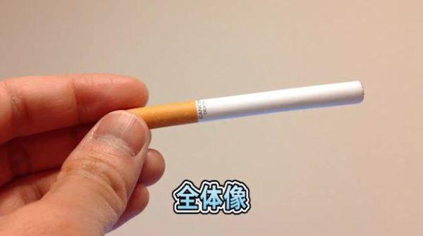"""身近にあるもので""""偽タバコ""""を作ってみた。小学生から重ねた研究の成果に「案外リアル」「コスプレに使える」の声"""