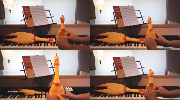 """『千と千尋の神隠し』の主題歌を""""びっくりチキン""""だけで演奏してみた! 絵面はカオスながら美しい音色に「無駄に幻想的」「実にシュール」の声"""