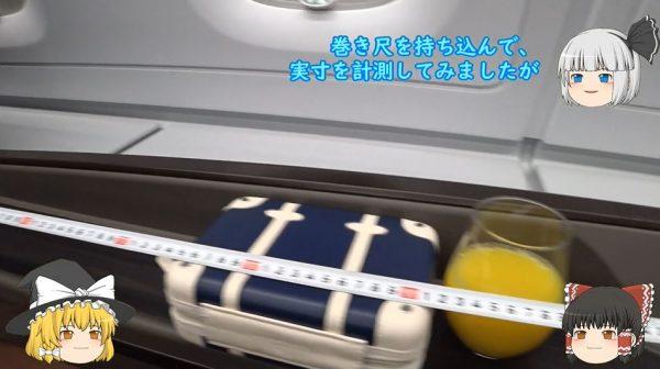 """ANAフライングホヌのファーストクラスでハワイへ! """"巻き尺持参""""で計測までしてきた搭乗レポに「乙でした」の声"""