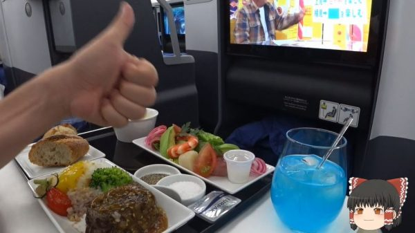 ANAハワイ路線「フライングホヌ」ビジネスクラスに乗ってみた ブルーハワイにウミガメの安全ビデオなど、ハワイ気分を盛り上げる機内体験をレポート!