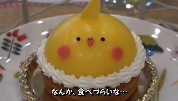 """小鳥をモフれる「ことりカフェ」で""""鳥かごに入った""""メルヘンなケーキを食べてきた! 可愛い鳥たちと過ごす時間に「行ってみた~い」の声"""