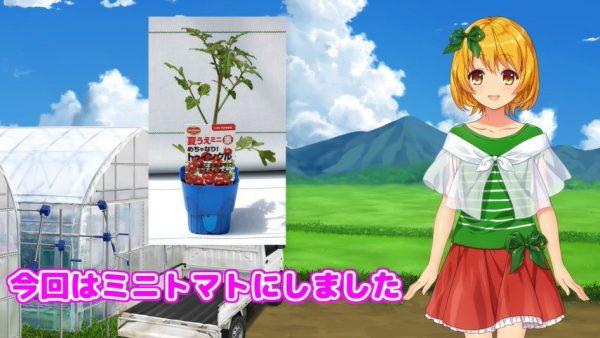 """""""農業系""""VTuberがプランターでミニトマトを栽培…育て方の知識とわかりやすさに「マジか」「なるほど」の声"""