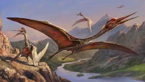 """『あつまれ どうぶつの森』に登場する化石「ケツァルコアトルス」ってどんな恐竜? 恐竜時代の空を支配した""""太陽神""""の生態を紹介!"""