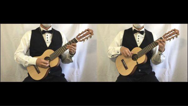 『となりのトトロ』の演奏が私に夏を連れてくる! ギター&ウクレレのハイブリッドな「ギタレレ」によるトロピカルな癒しサウンドに「落ち着く」「ええなぁ」の声