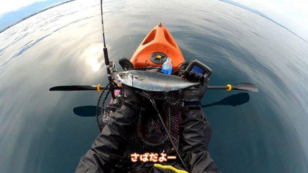 シラスを餌にカヤックフィッシング! ヒラメやマグロ(!)まで釣り上げる様子に「こういう場所で釣り良いなあ」の声