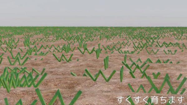 """文字通り「草」を生やすCGアニメを作ってみた! 畑に植えた""""www""""が成長する様子に「これは草」「大草原不回避」の声"""