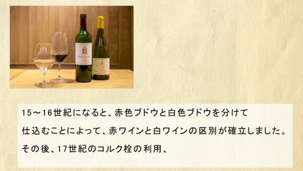ワインが生まれたのは1万年前!? 歴史や製造工程などワイン好きに知ってほしい豆知識あれこれ