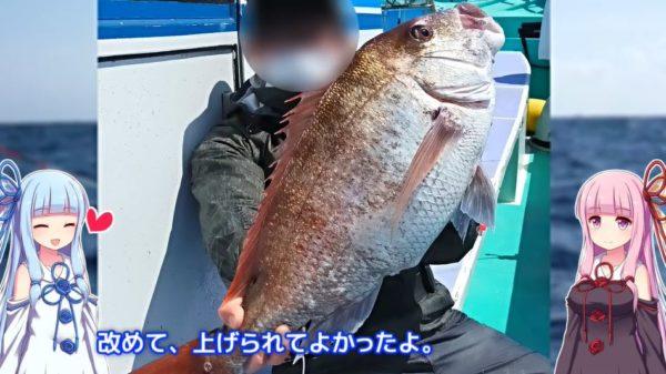 """テンヤタックルで真鯛に挑戦。魚拓を取りたくなるような""""超大物""""を釣り上げてきた!"""