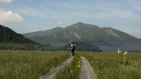 夏が来ればの「尾瀬」へ行ってきた…ドローンで空撮した疾走感ある美しい映像に「めっちゃ好き」の声