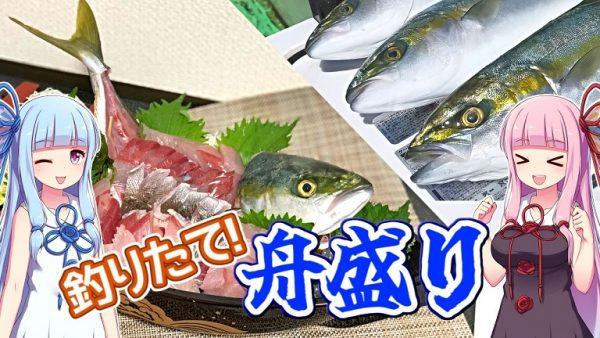江ノ島沖で釣れた魚で「舟盛り」するとこうなる! イナダやイサキ、フグまで釣れちゃったぞ…